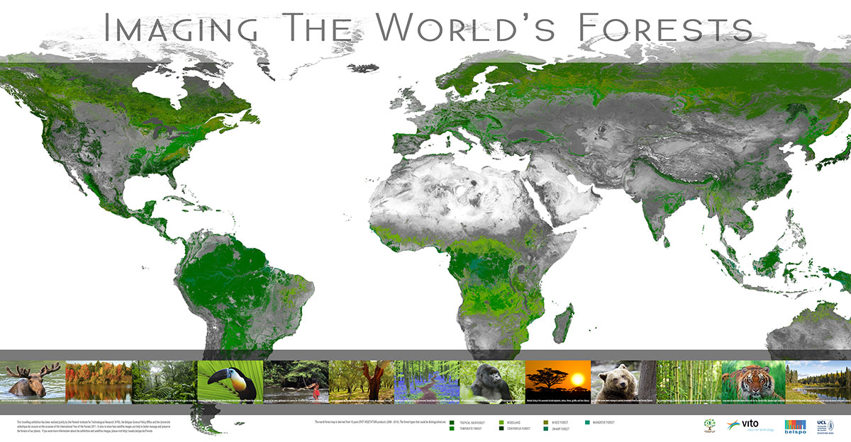 Imaging the world's forests